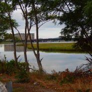 Neponset River Watershed Ride