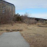 Clean Up the Quincy Riverwalk